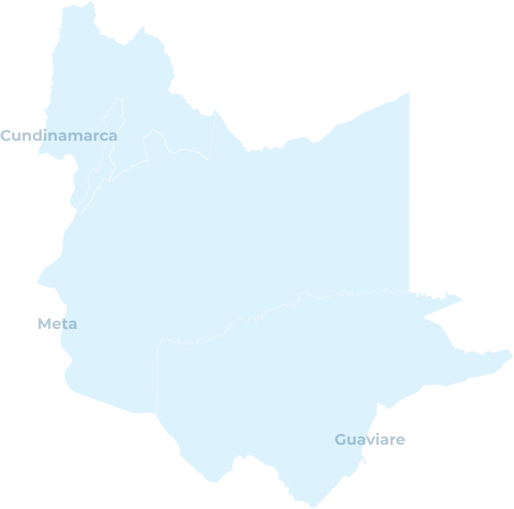 Llanos-orientales